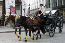 Radtour Passau Wien - Fiaker
