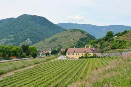 Wachau - based in one hotel